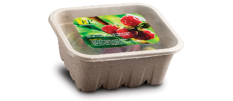 Earth Friendly Tray from Emerald Packaging